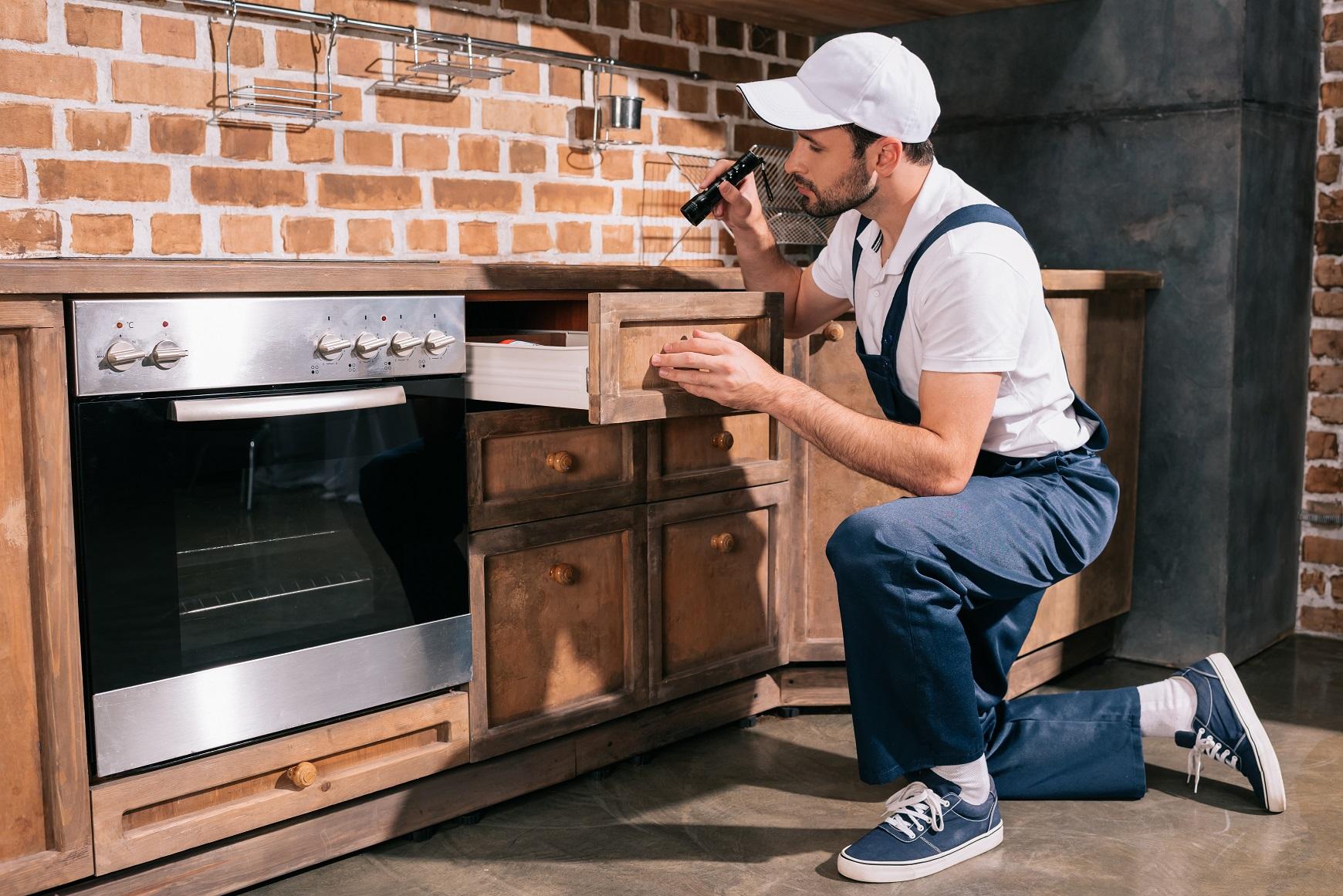 va home loans termite inspection